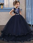 Χαμηλού Κόστους Λουλουδάτα φορέματα για κορίτσια-Πριγκίπισσα Μακρύ Μήκος Φόρεμα για Κοριτσάκι Λουλουδιών - Δαντέλα / Τούλι Αμάνικο Με Κόσμημα με Κρυστάλλινη λεπτομέρεια / Κέντημα
