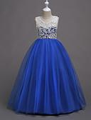 Χαμηλού Κόστους Λουλουδάτα φορέματα για κορίτσια-Πριγκίπισσα Μακρύ Μήκος Φόρεμα για Κοριτσάκι Λουλουδιών - Δαντέλα / Σατέν / Τούλι Αμάνικο Με Κόσμημα με Δαντέλα