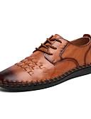 ราคาถูก เสื้อโปโลสำหรับผู้ชาย-สำหรับผู้ชาย รองเท้าสบาย ๆ แน๊บป้า Leather ฤดูใบไม้ผลิ / ตก คลาสสิก / ไม่เป็นทางการ รองเท้า Oxfords ไม่ลื่นไถล สีดำ / สีน้ำตาล