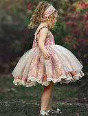 זול שמלות לתינוקות-שמלה פרחוני ורד מאובק בנות ילדים / פעוטות