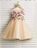 billige Blomsterpikekjoler-Prinsesse Knelang Blomsterpikekjole - Sateng / Tyll Stropper Besmykket med Broderi