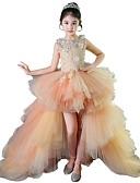 Χαμηλού Κόστους Λουλουδάτα φορέματα για κορίτσια-Γραμμή Α Ασύμμετρο Φόρεμα για Κοριτσάκι Λουλουδιών - Τούλι Αμάνικο Με Κόσμημα με Διακοσμητικά Επιράμματα / Βαθμίδες
