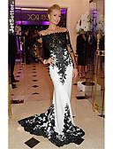 baratos Vestidos de Festa-Sereia Ombro a Ombro Cauda Escova Renda Elegante / Color Block Evento Formal Vestido 2020 com Lantejoulas / Apliques