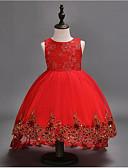 Χαμηλού Κόστους Λουλουδάτα φορέματα για κορίτσια-Βραδινή τουαλέτα Ασύμμετρο Φόρεμα για Κοριτσάκι Λουλουδιών - Βαμβάκι / POLY / Τούλι Αμάνικο Με Κόσμημα με Κέντημα