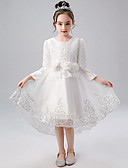 cheap Flower Girl Dresses-A-Line / Princess Medium Length Flower Girl Dress - Lace / Tulle / Poly&Cotton Blend Long Sleeve Jewel Neck with Lace / Splicing / Paillette by LAN TING Express