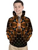 billige T-skjorter og singleter til herrer-Barn Baby Gutt Aktiv Grunnleggende Fantastiske dyr Geometrisk Fargeblokk 3D Trykt mønster Langermet Hettegenser og sweatshirt Brun / Rutet
