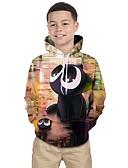 povoljno Majice s kapuljačama i trenirke za dječake-Djeca Dječaci Aktivan Print Print Dugih rukava Trenirka s kapuljačom Duga