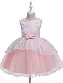 olcso Bébi ruhák-Baba Lány Aktív Pillangó Egyszínű Csipke / Csokor / Háló Ujjatlan Térd feletti Ruha Arcpír rózsaszín