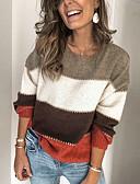 povoljno Ženski džemperi-Žene Prugasti uzorak Dugih rukava Pullover Džemper od džempera, Okrugli izrez Jesen Braon S / M / L