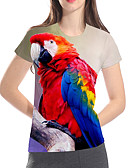 billige Todelt dress til damer-T-skjorte Dame - 3D / Dyr / Tegneserie, Trykt mønster Grunnleggende / overdrevet Ugle Regnbue