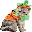 Costumes pour Chat