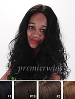 cheap -Human Hair Lace Wig Curly Lace Front 100% Hand Tied African American Wig Natural Hairline 130% Density Dark Black Black Dark Brown Medium