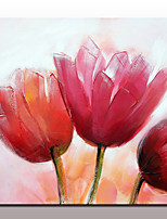 economico -Dipinta a mano Floreale/Botanical Semplice Modern Tela Hang-Dipinto ad olio Decorazioni per la casa Un Pannello