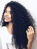 Women Human Hair Lace Wig Brazilian Human Hair 360 Frontal 130% Density With Baby Hair With Ponytail Curly Wig Black Long For Black Women