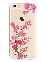 economico -Custodia Per iPhone 5 Apple Transparente Fantasia/disegno Per retro Fiore decorativo Morbido TPU per iPhone SE/5s iPhone 5