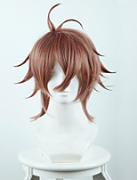 Fate/Apocrypha Sieg Short Brown Ombre Anime Cosplay Wigs Wholesale Resale