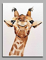 Curious Giraffe 100% Hand Painted Contemporary Oil Paintings Modern Artwork Wall Art for Room Decoration