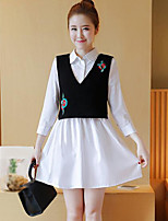 Women's Going out Casual/Daily Simple Summer Tank Top Skirt Suits,Embroidery Shirt Collar Long Sleeve