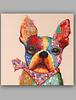Hand-Painted Animal SquareClassic Creative Modern/Contemporary One Panel Canvas Oil Painting For Home Decoration
