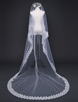 Lady's Elegant Romance Wedding Veil One-tier Chapel Veils Lace Applique Edge Lace Tulle