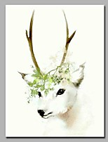 Snow White Deer 100% Hand Painted Contemporary Oil Paintings Modern Artwork Wall Art for Room Decoration