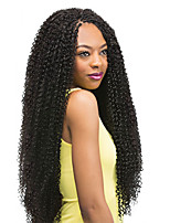 24'' Zizi curl braid hair best synthetic hair extension micro zizi hair kanekalon freetress water wave deep curly hair bundles Micro Knot zizi hair