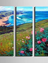 Mini Size E-HOME Oil painting Modern Coastal Scenery Pure Hand Draw Frameless Decorative Painting Set of 3