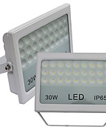 JIAWEN 2pcs LED Flood light 30W  2400LM Cool White or Warm White WOutdoor Waterproof IP65 LED Landscape lights (AC85-265V)