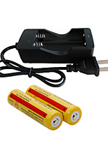 Chargers LED 2000 Lumens Mode - 2 x 18650 Batteries Rechargeable for Camping/Hiking/Caving Everyday Use Cycling/Bike Hunting