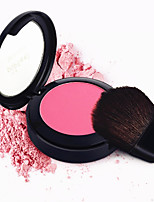 Bronzer Pressed Natural Face Cheek Color Lasting Powder Blush Blusher Makeup Palette Brush Mirror