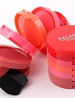 Blush Dry Matte Pressed powder Face China
