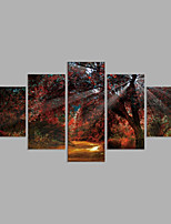 Canvas Print Abstract,Five Panels Canvas Horizontal Print Wall Decor For Home Decoration