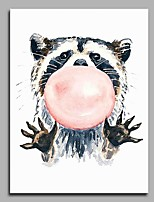 Saucy Raccoons Modern Artwork Wall Art for Room Decoration
