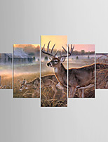 Five Panels Canvas Any Shape Print Wall Decor For Home Decoration