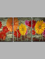 Hand-Painted Floral/Botanical Horizontal Panoramic,Artistic Nature Inspired Rustic Birthday Modern/Contemporary Office/Business Christmas
