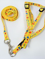 Leash Portable Geometric Nylon