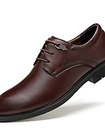 Men's Shoes Real Leather Nappa Leather Cowhide Fall Winter Comfort Formal Shoes Driving Shoes Oxfords Lace-up For Casual Office & Career