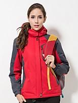 Women's Hiking Down Jacket Windproof Stretchy Waterproof Single Slider Rain Proof Down Jacket Fleece Jacket for Recreational Cycling