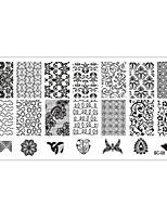 Stampini per unghie Piastre della mascherina di immagine Raschietto per unghie