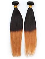vierge Cheveux Brésiliens A Ombre Raide Extensions de cheveux 2 Noir / Medium Auburn