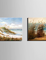 E-HOME Stretched Canvas Art The Grass On The Beach Decoration Painting Set Of 2