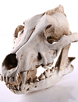 1PC Halloween Resin Jackal Skull Decorations Home Furnishing Jewelry Crafts Ornaments