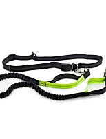 Leash Hands Free Leash Reflective Classic Nylon