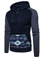 Men's Casual/Daily Simple Hoodie Print Color Block Hooded Inelastic Cotton Long Sleeve Fall