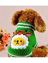 Cane Maglioni Abbigliamento per cani Tenere al caldo Geometrico Rosso Verde