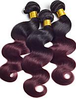vierge Cheveux Indiens A Ombre Ondulation naturelle Extensions de cheveux 3 Pièces noir Bordeaux / Foncé
