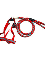 Leash Portable Solid Nylon