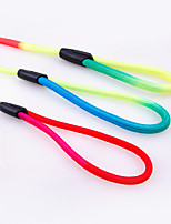 Leash Portable Rainbow Nylon