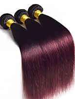 vierge Cheveux Malaisiens A Ombre Raide Extensions de cheveux 3 Pièces noir Bordeaux / Foncé