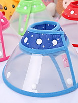 Collar Adjustable Safety Polka Dot Plastic